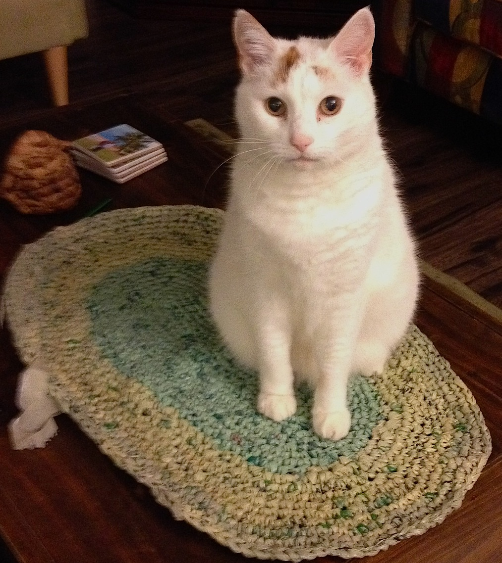 Cat on a mat, crocheted with plarn