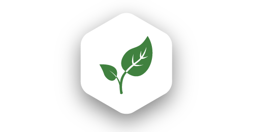 icon-sustainability.png