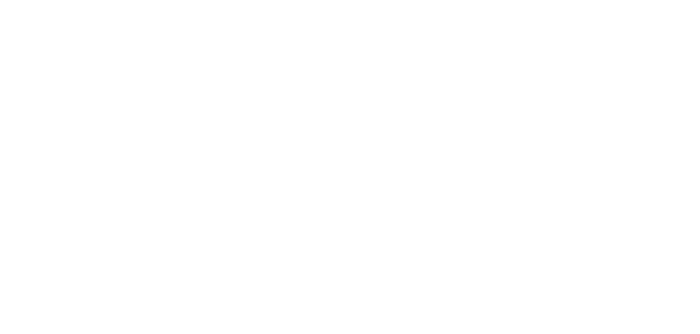 allure_security_logo.png