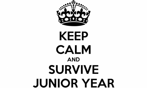 keep-calm-and-survive-junior-year-4-e1429801193879.png