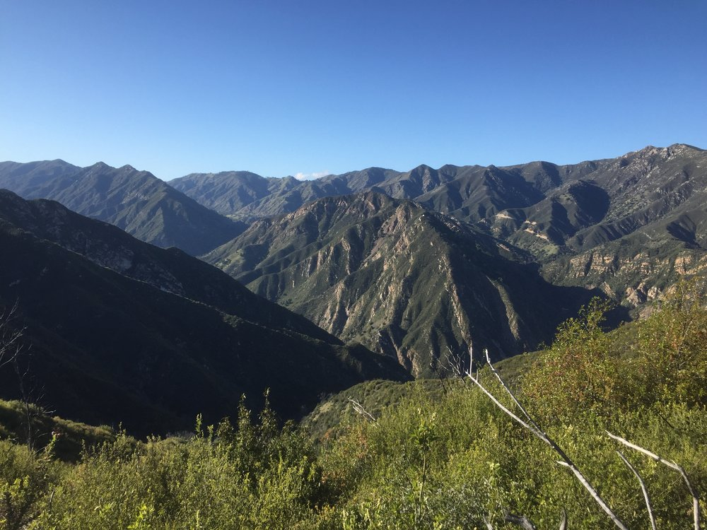 The rugged, fire-prone Santa Lucia mountains and the creek canyon Tassajara Zen Center is tucked in.