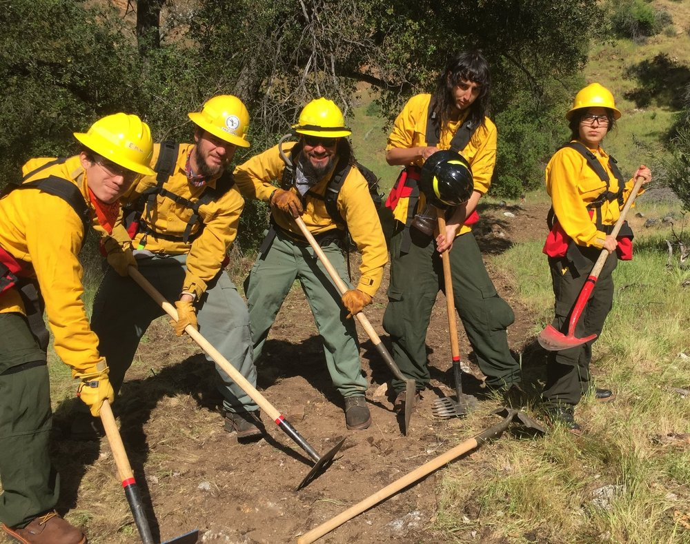 AMLT Native Stewards cutting fire line.