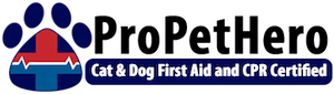 badge-6 pet first aide.png