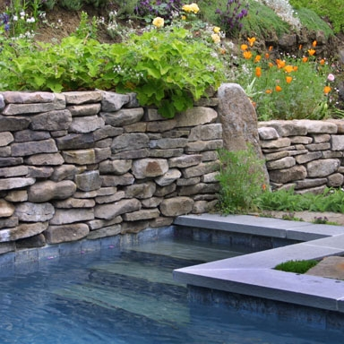 Sleepy Hollow Residence - a new pool and garden.