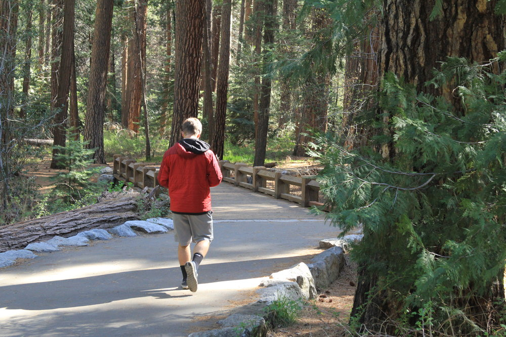 Yosemite Falls - 7.jpg