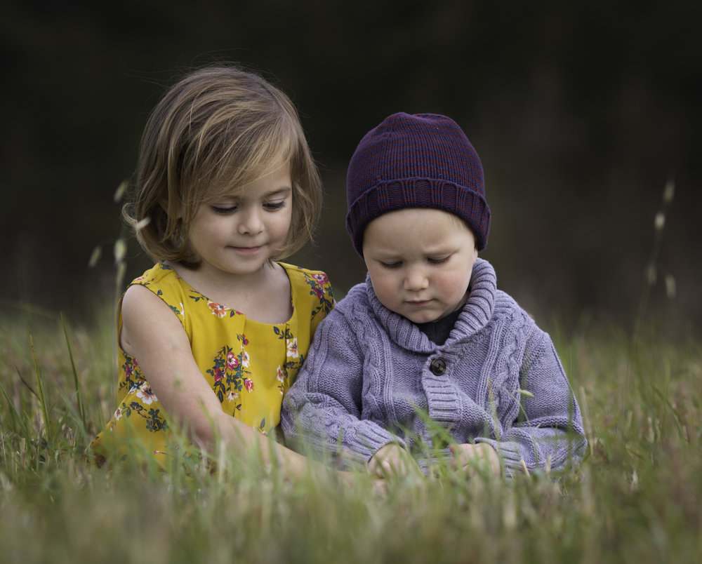 toddler girl and boy in field looking at grass  belleville family photographer