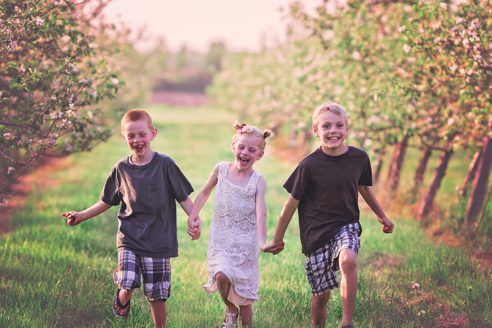 siblings in orchard belleville family photographer