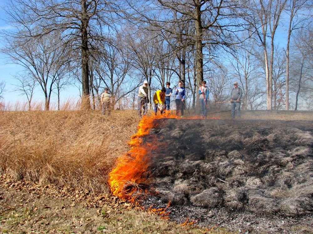 SIFT Controlled burn.jpg