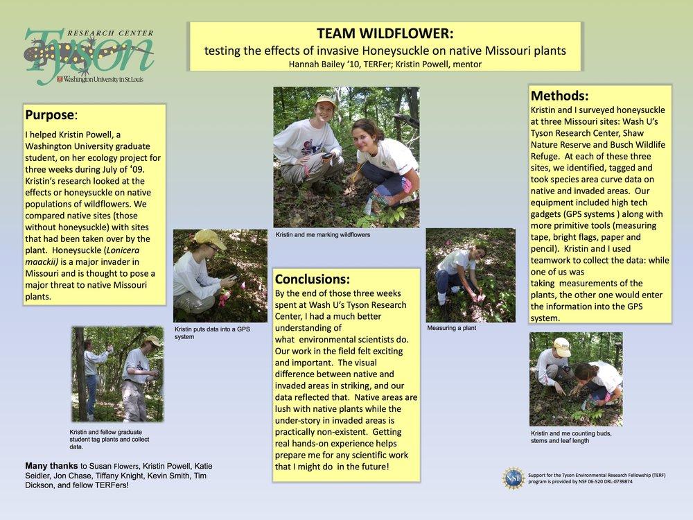 TERF 2009 Wildflower poster.jpg