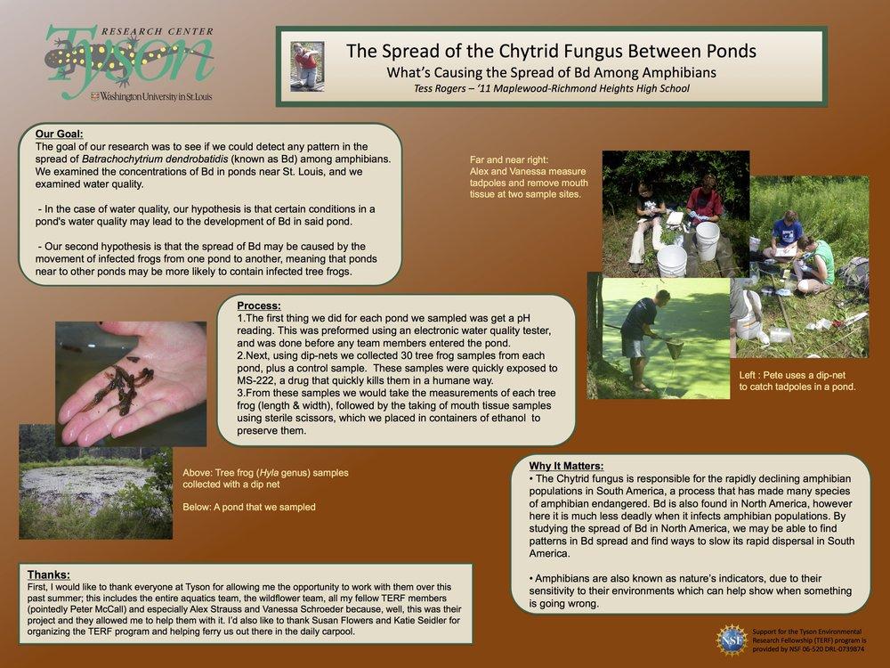 TERF 2009 Chytrid poster.jpg