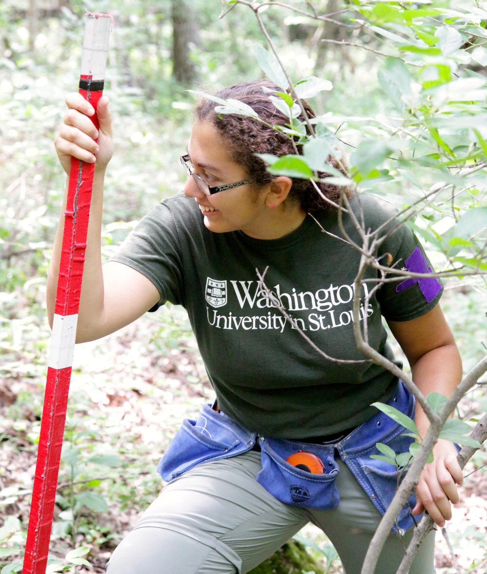 """I learned more about team dynamics in a work setting. Also I learned about the methods behind many ecological research projects; both those being done at Tyson, and the others through reading papers and listening to seminars."" - Former Tyson Undergraduate Fellow"