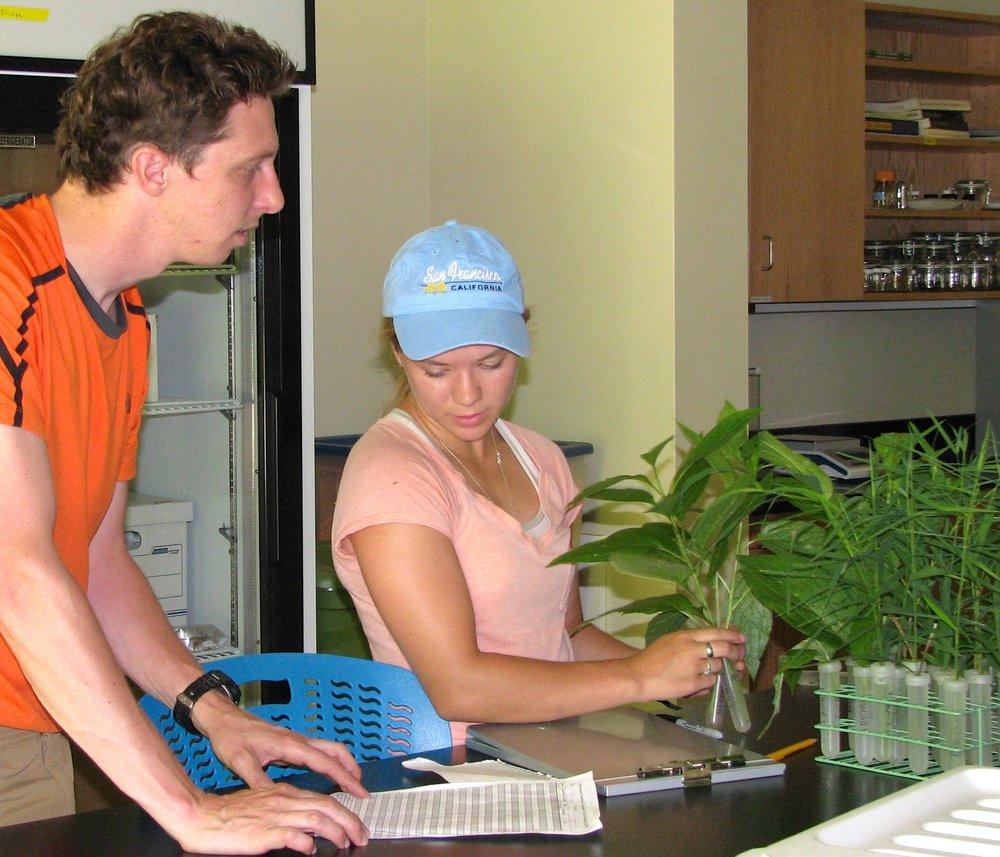 Herb Diversity.jpg