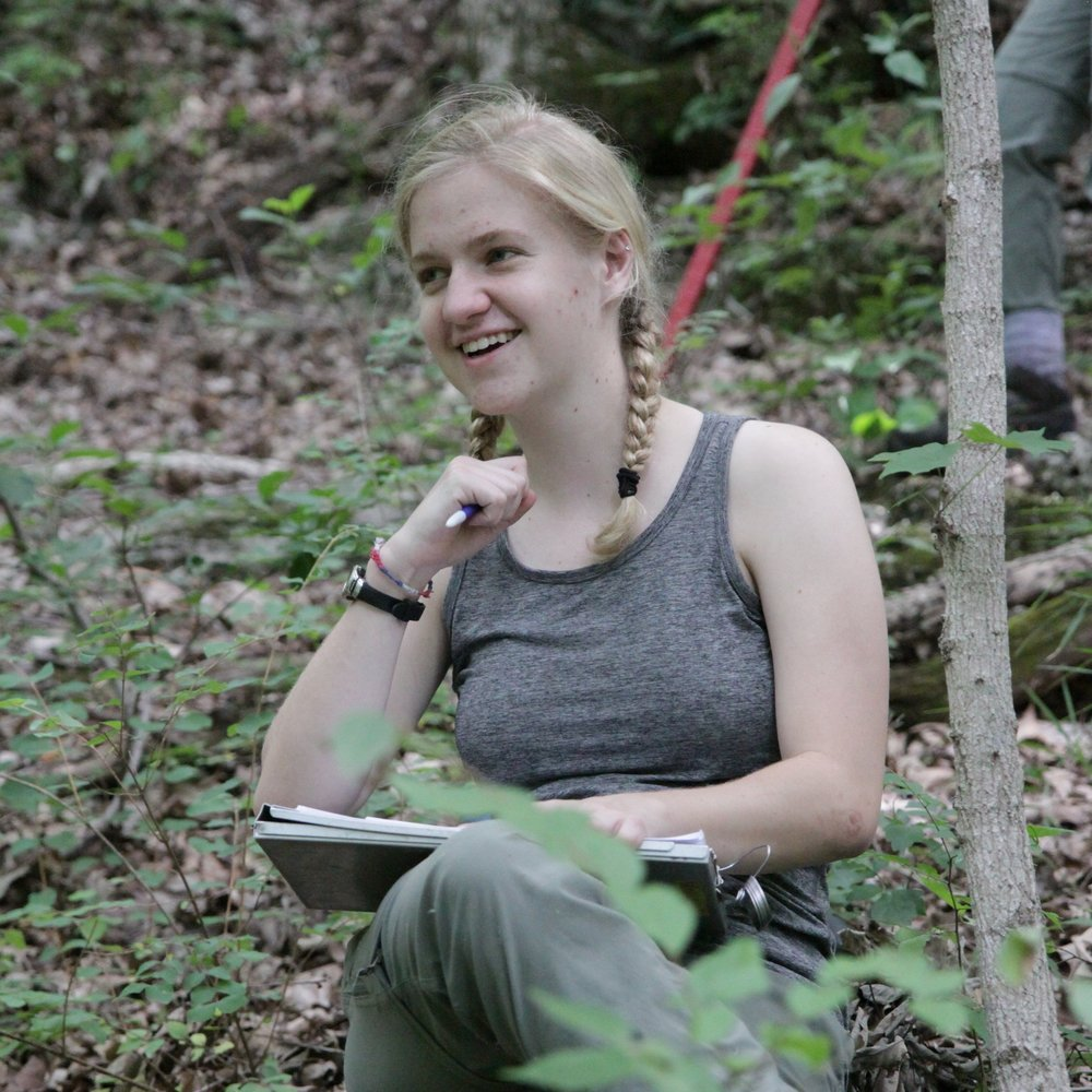 Emma enjoying data entry in the forest