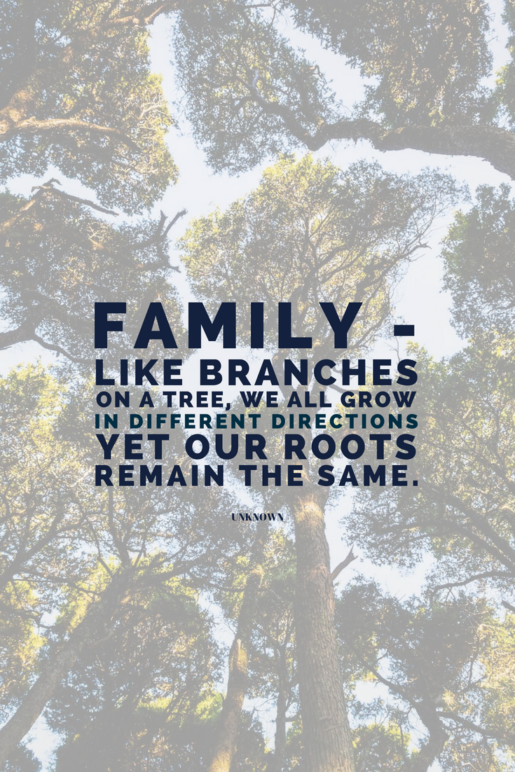Family - like branches on a tree, we all grow in different directions, yet our roots remain the same. Learn these 3 things that should be on your goal list if you want to be more than happy TODAY! http://bit.ly/astonishing-happiness-goals
