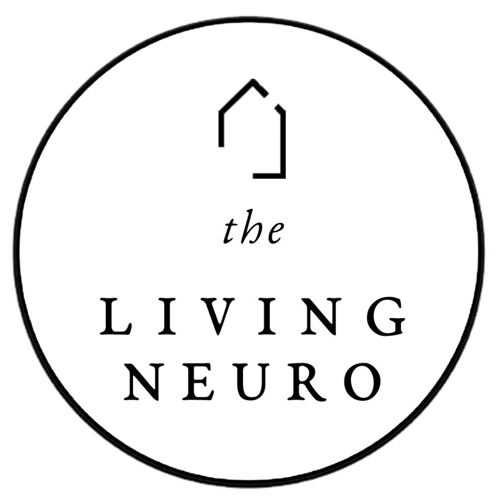 Living Neuro Terms Privacy Client Agreement