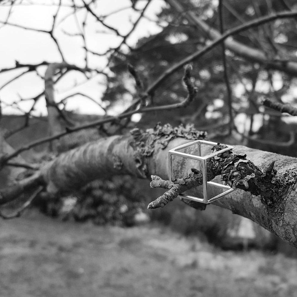 lena-birgitsdotter-cubic-in-tree.jpg