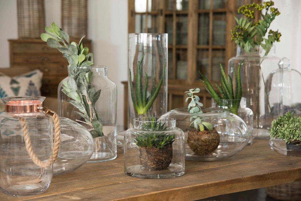LR Close Up vases - Low Res.jpg