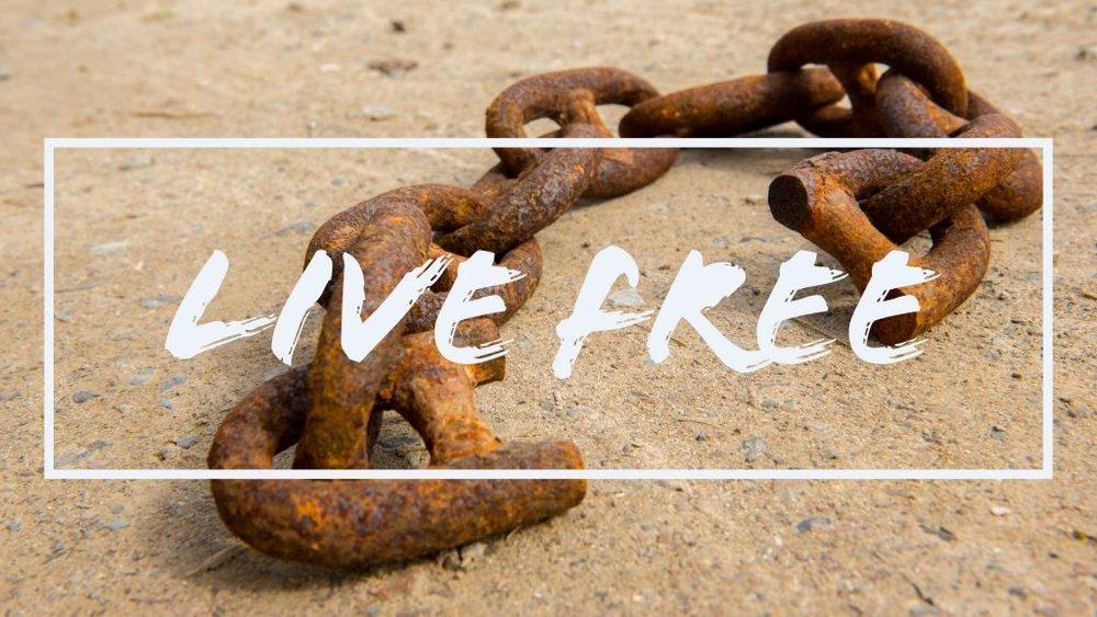 live-free-web-1024x576.jpg