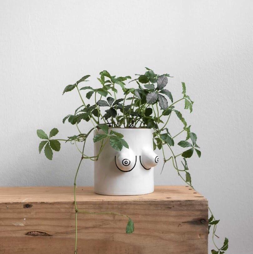 11. UNE PLANTE EN POT - comme un plant de menthe bio pour faire des infusions dans un joli pot de I Like Making Stuff (39€, disponible sur Fine Little Day Store)