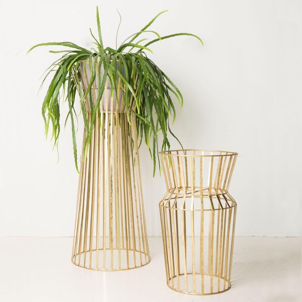 Plant Solstice, 69,95€
