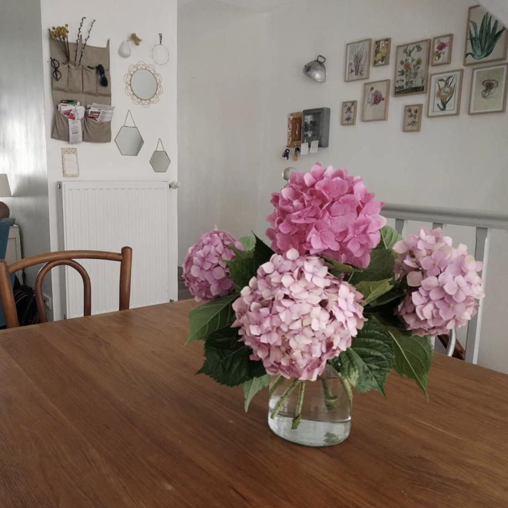 hortensia-deco-cuisine