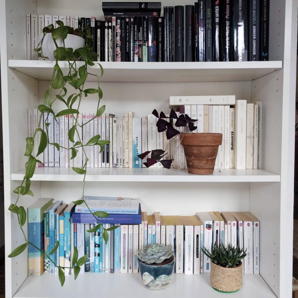 bibliotheque-kinfolk