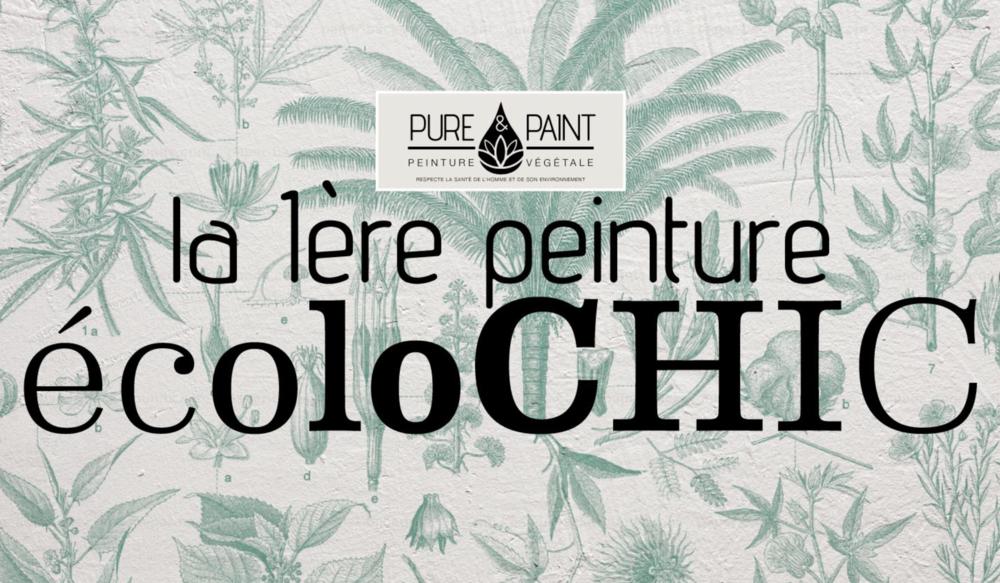 pure-and-paint-ecolochic-peinture-eco-responsable