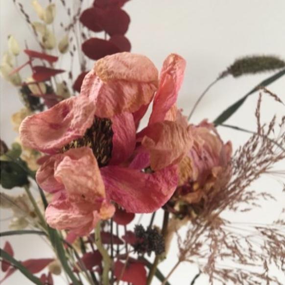 jeanne-paris-sarazzin-fleurs-sechees-ecologiques