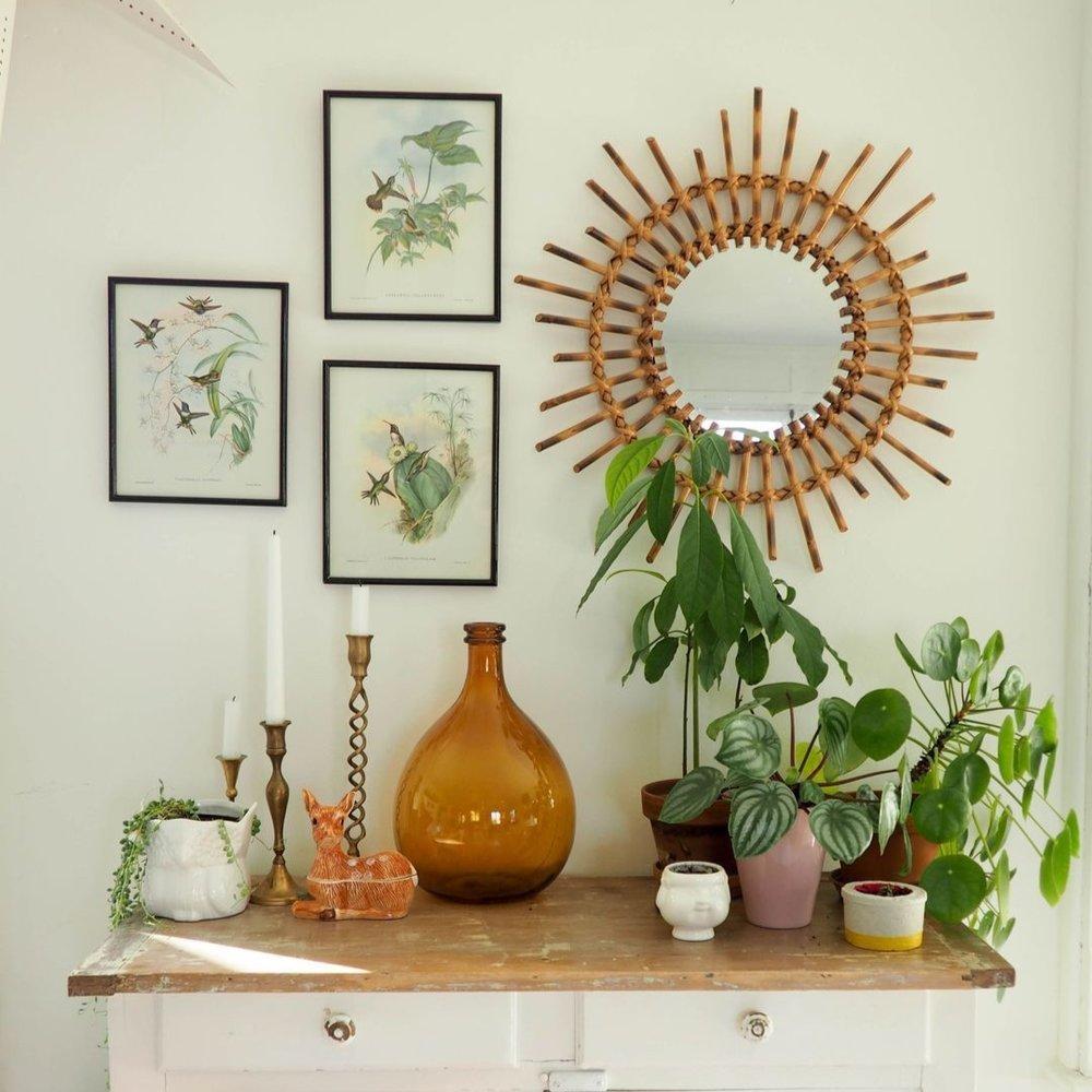 gravures-vintage-colibris-oiseaux-et-plantes-1.jpg