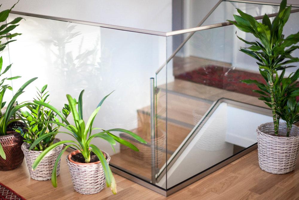 Glasräck_X-glas