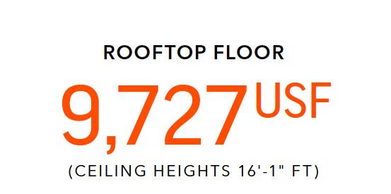 OneCourtNumbers-Rooftop.jpg