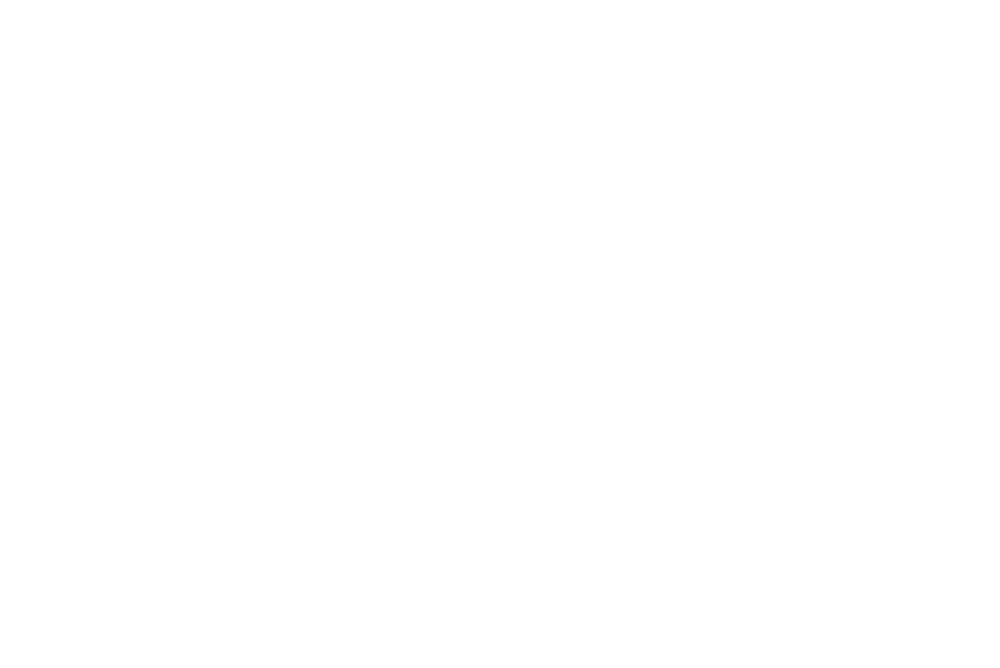 DreamWorks_Animation_SKG_logo-w.png