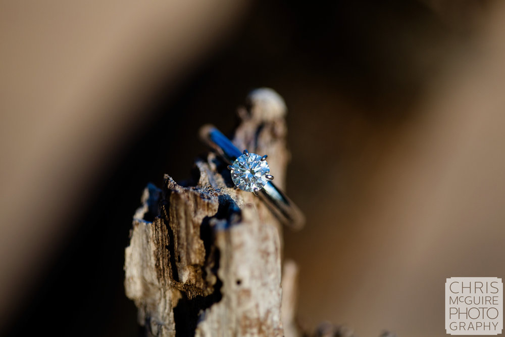 engagement ring on driftwood