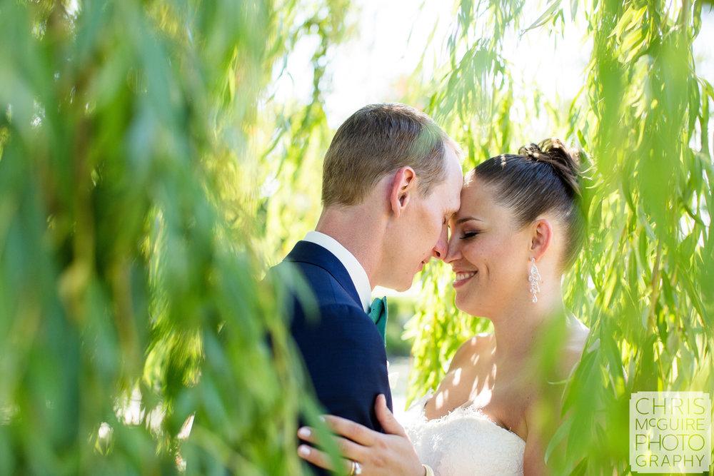 bride groom in weeping willow tree