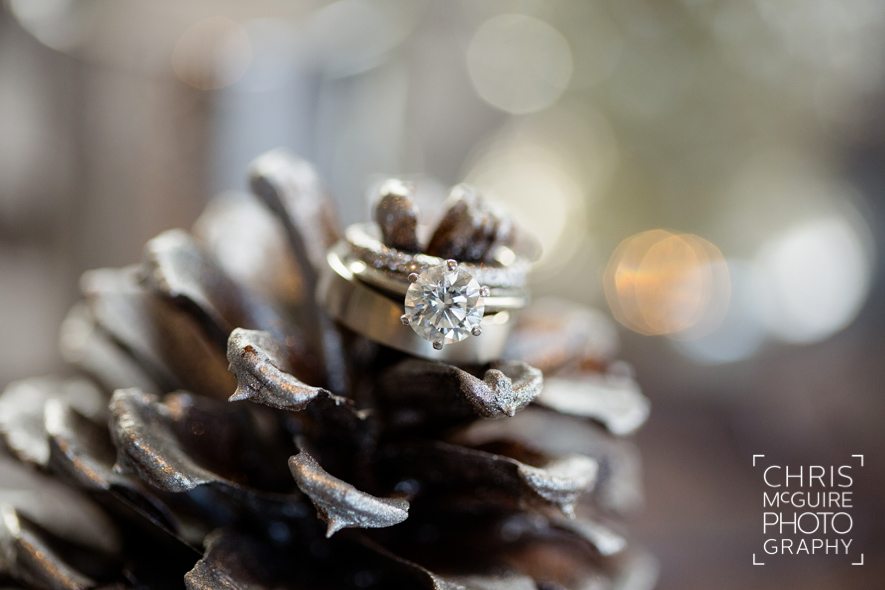 wedding rings on winter pine cone