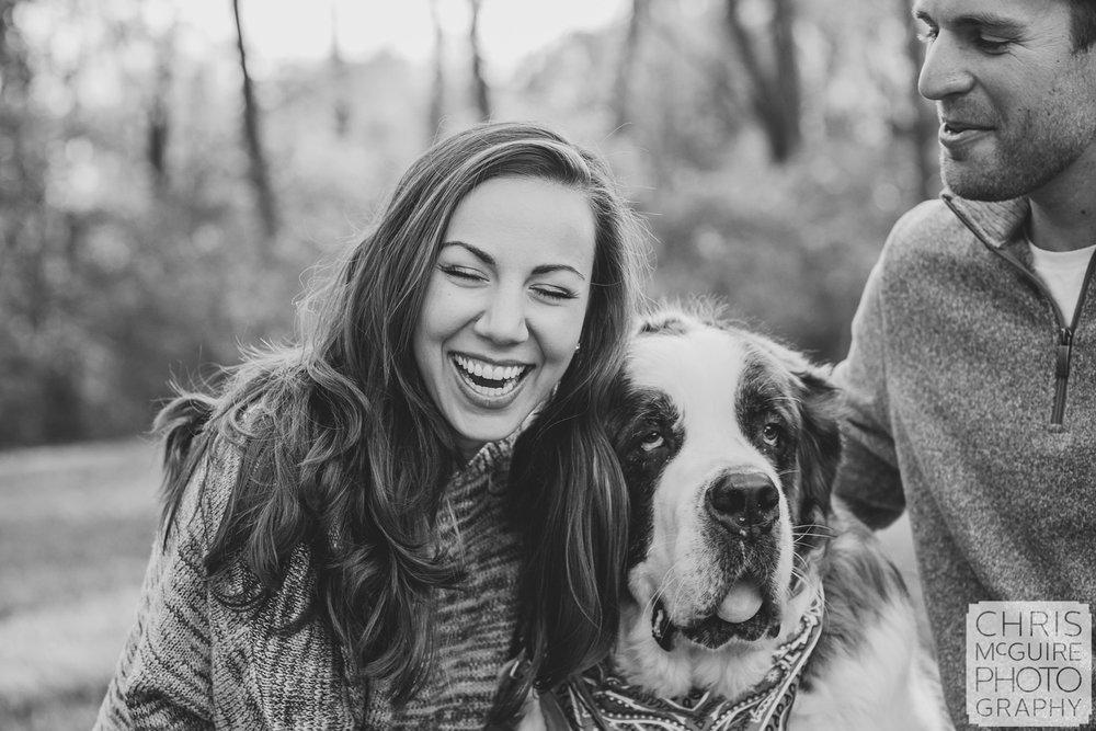 engagement portrait with st bernard laughing