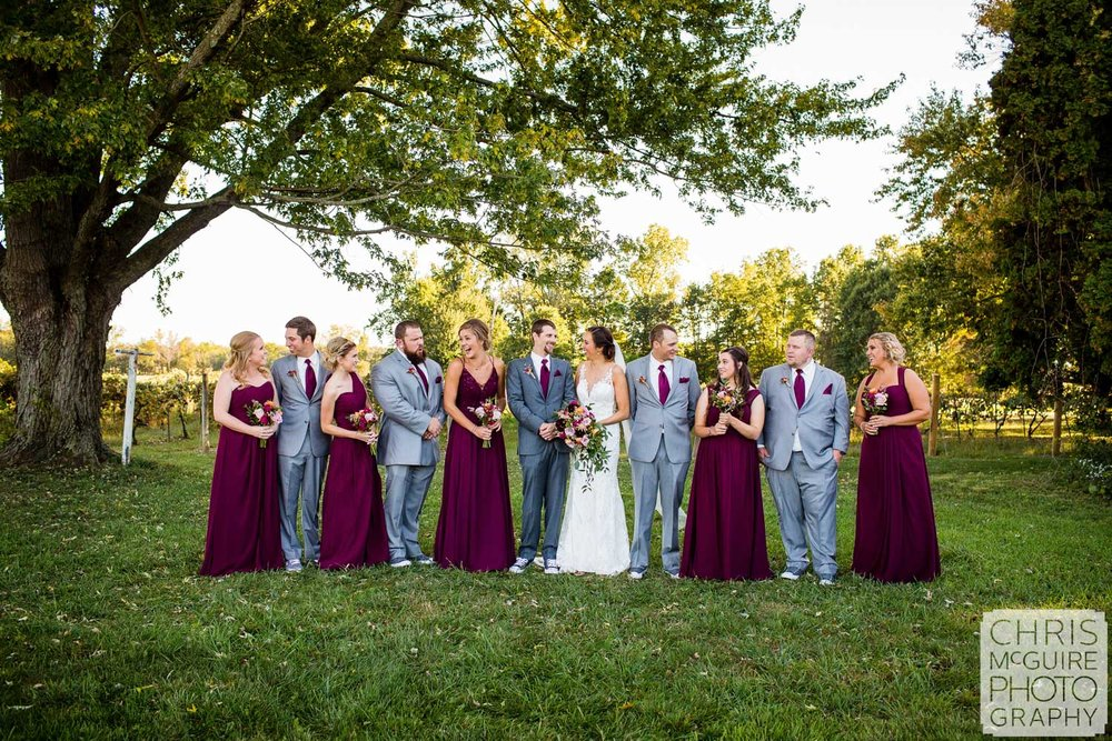 wedding party at vineyard