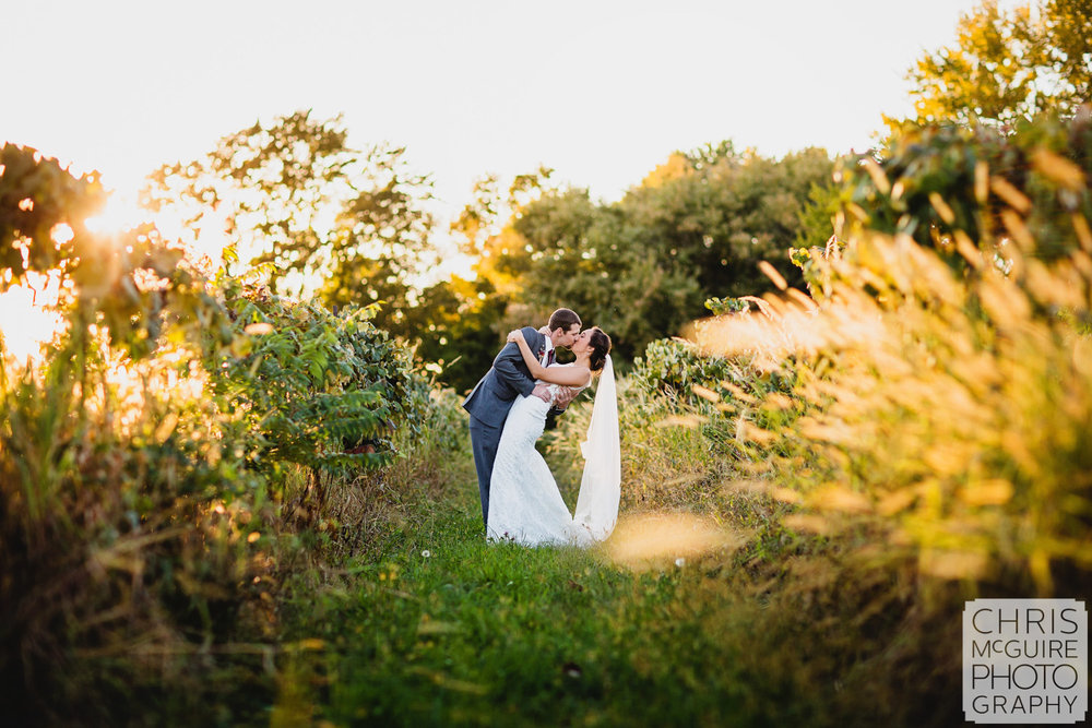 bride and groom kiss at sunset in vineyard peoria il wedding photography