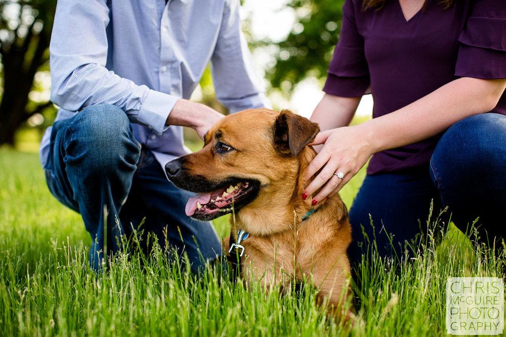 dog engagement portrait