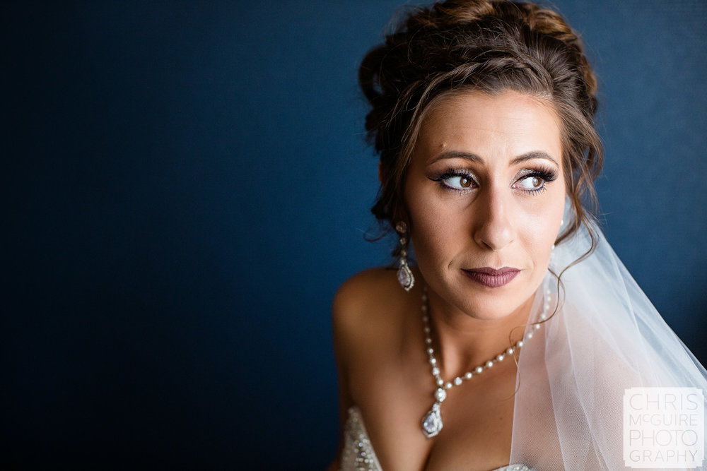 Beautiful Bride Central Illinois