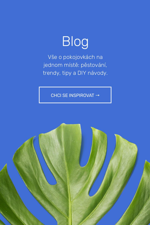 blogv3@2x.jpg