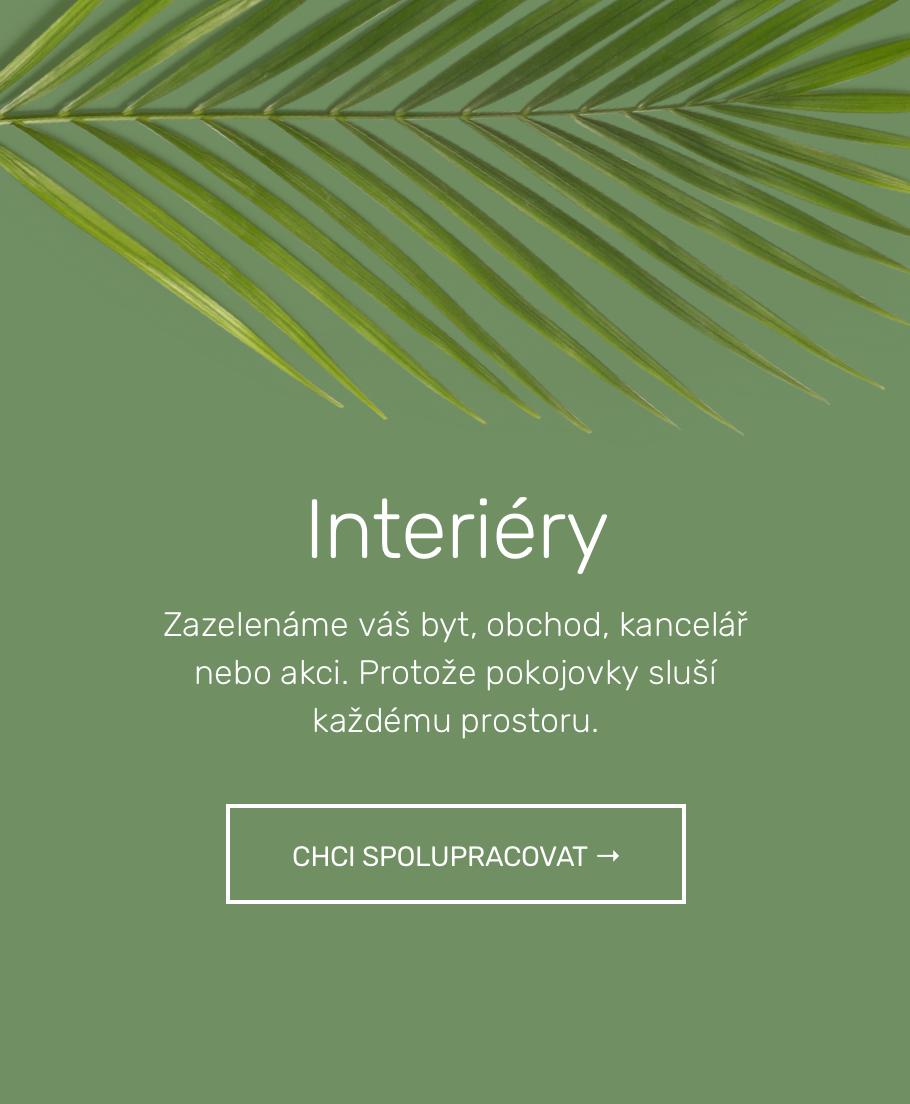 interieryv3@2x.jpg