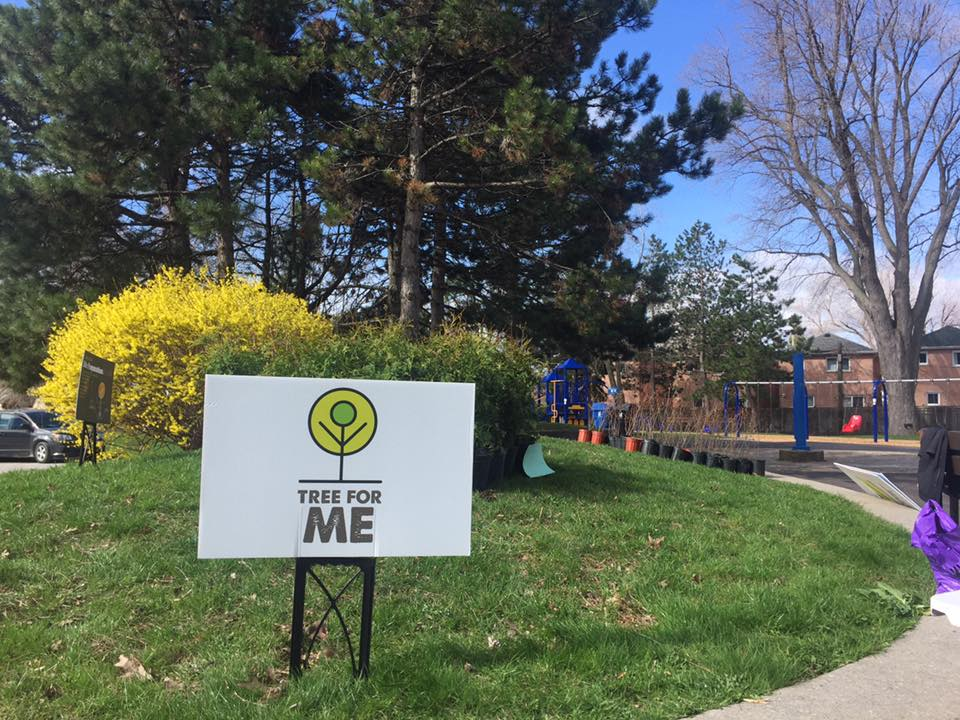 Tree For Me   more trees in our yards, more trees in our communities, more trees in our city.   Download the 2018 Grant Application