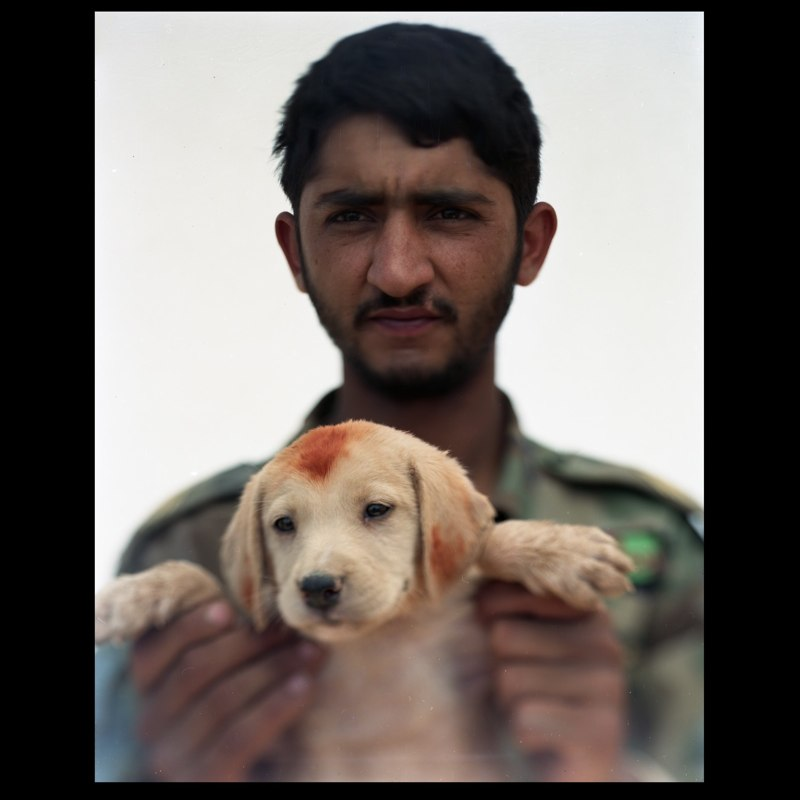 An Afghan National Army soldier holds a newly adopted puppy with henna on its head and ears at Camp Hill in Marja.