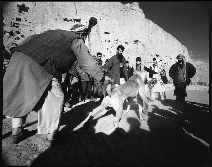 Sag Janji (dog fighting) at Bamiyan.