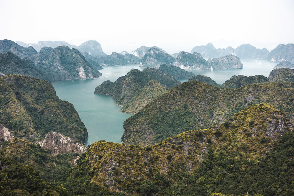 The karst islands of Halong Bay