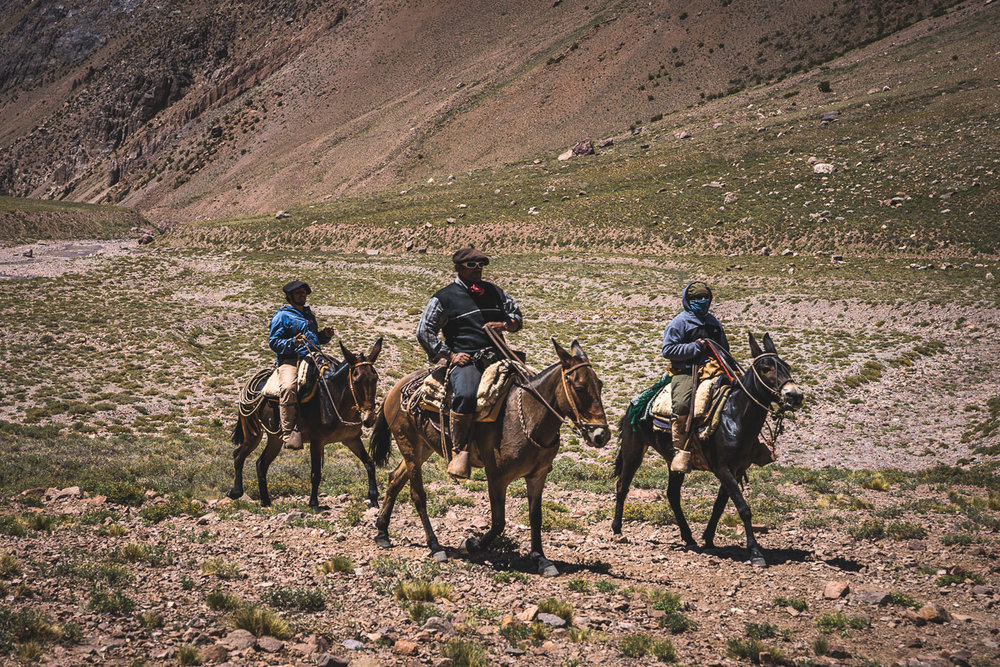 The arrieros riding past
