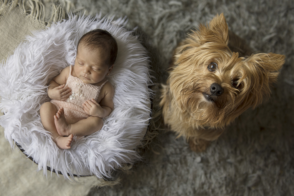 sesiones-recién-nacidos-montevideo-uruguay-madres-bebes-new-born-pati-matos (15).jpg 1.jpg