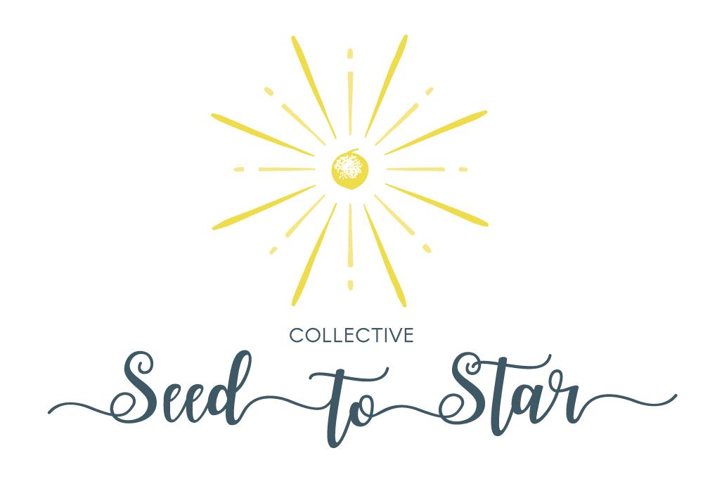 Astrology Workshop Natal Chart Interpretation The Seed To Star