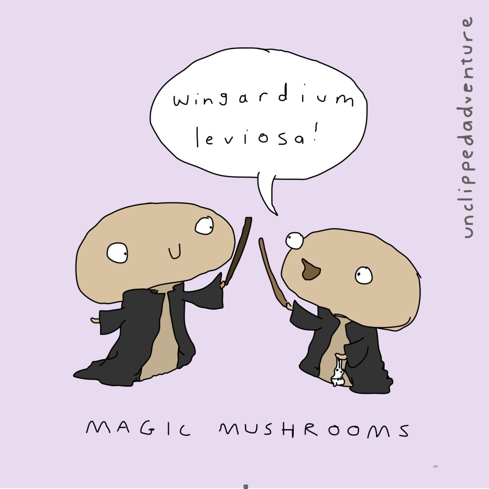 magic mushrooms-09.png